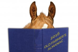 2016 - Old Farmer's Almanac