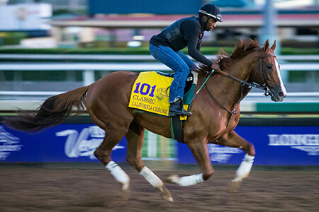 CaliforniaChrome11-03