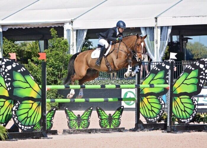 Liz Halliday-Sharp Aboard Deniro Z at the Wellington Eventing Showcase, Photo labeled WEF 2017, Photo Credit Julieann Prettyman