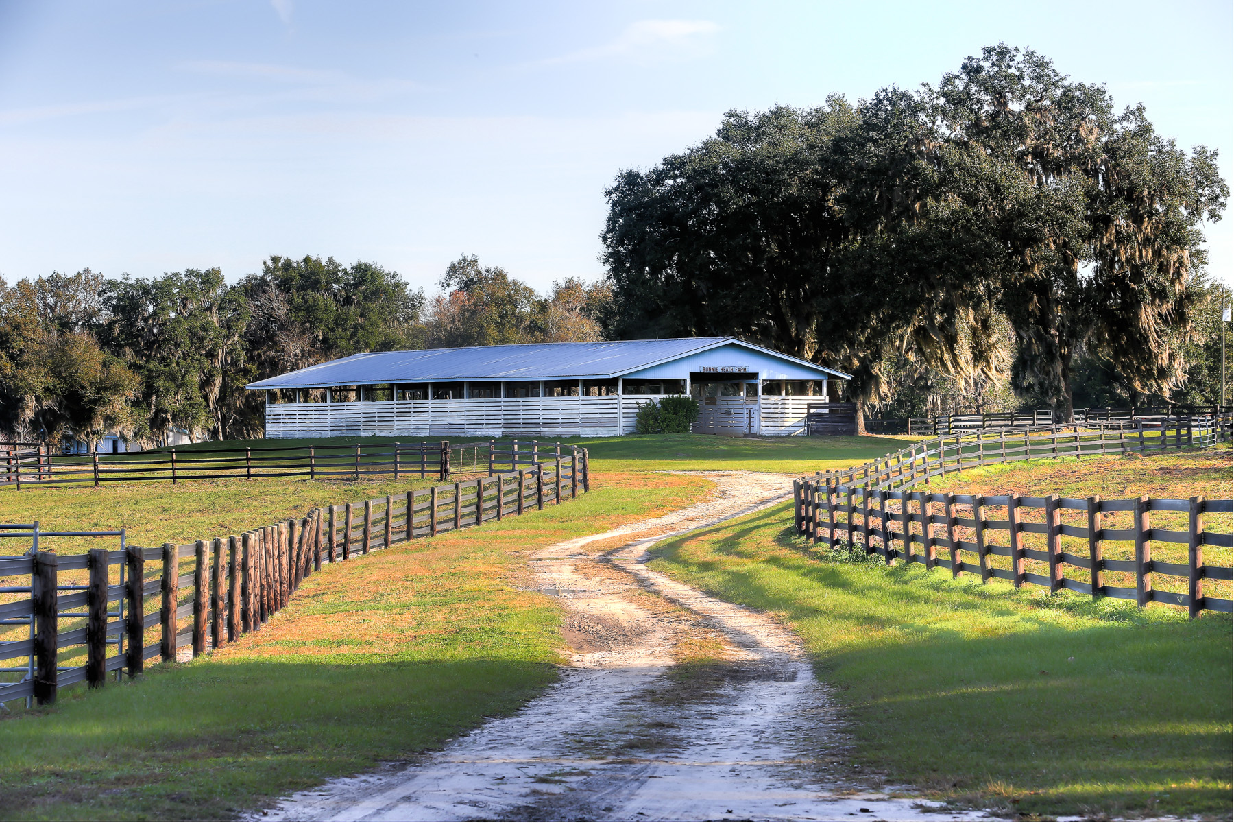 80.53 Acre Ocala Farm - OHP4912