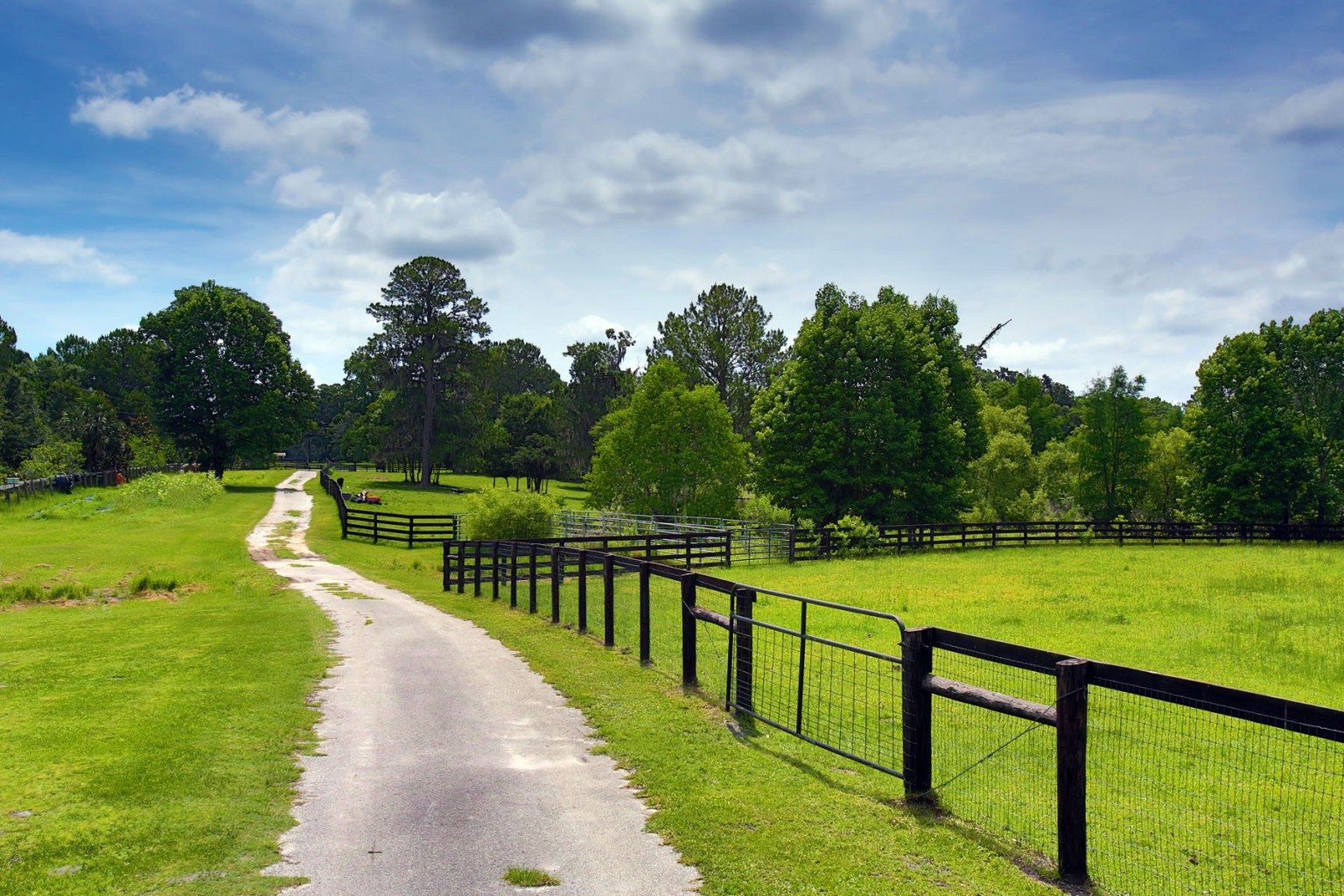 Black Forest Farm | Ocala Horse Farm For Sale | Ocala ...