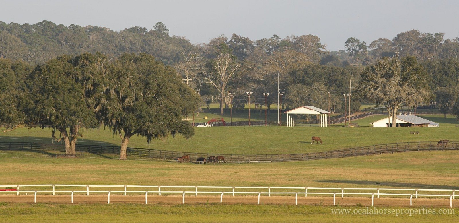 Bridlewood Ocala Horse Farm For Sale Ocala Horse