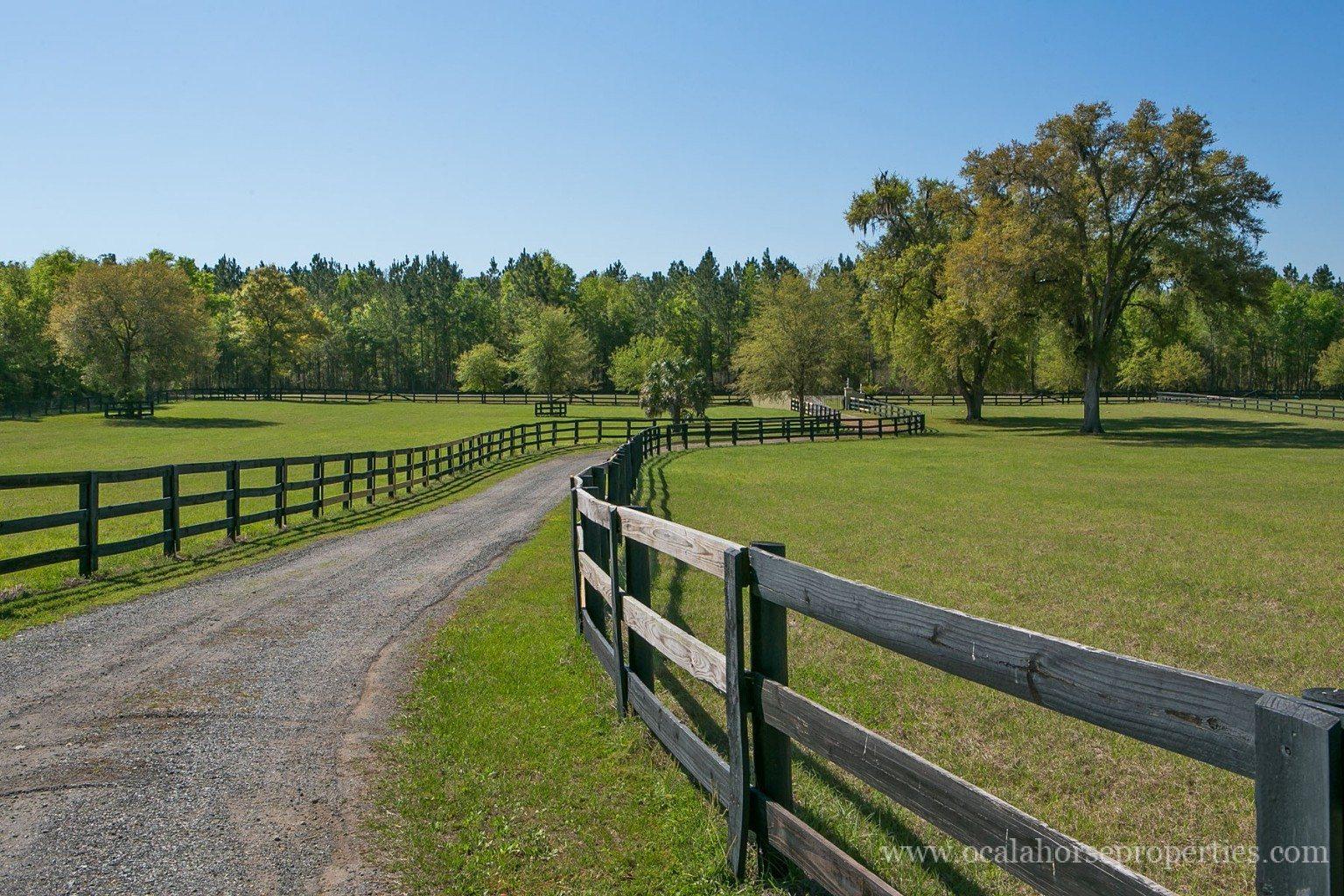 Grandview ranch ocala horse farm for sale ocala horse for Horse farm
