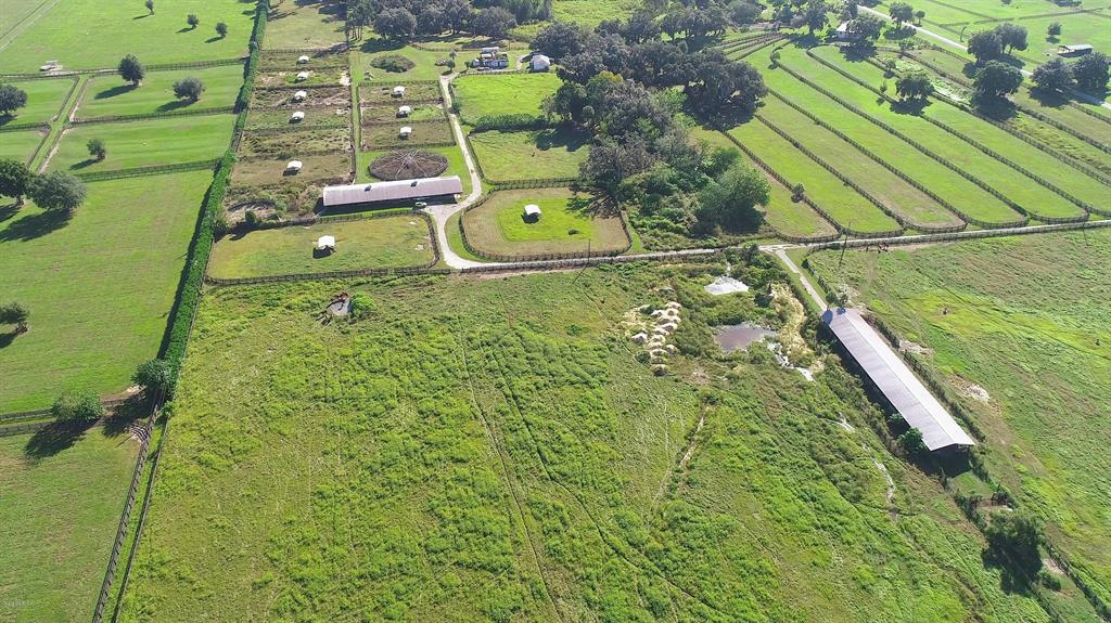 51.41 Acre Ocala Farm - OHP8004
